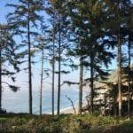 Agate Beach Patrick's Point