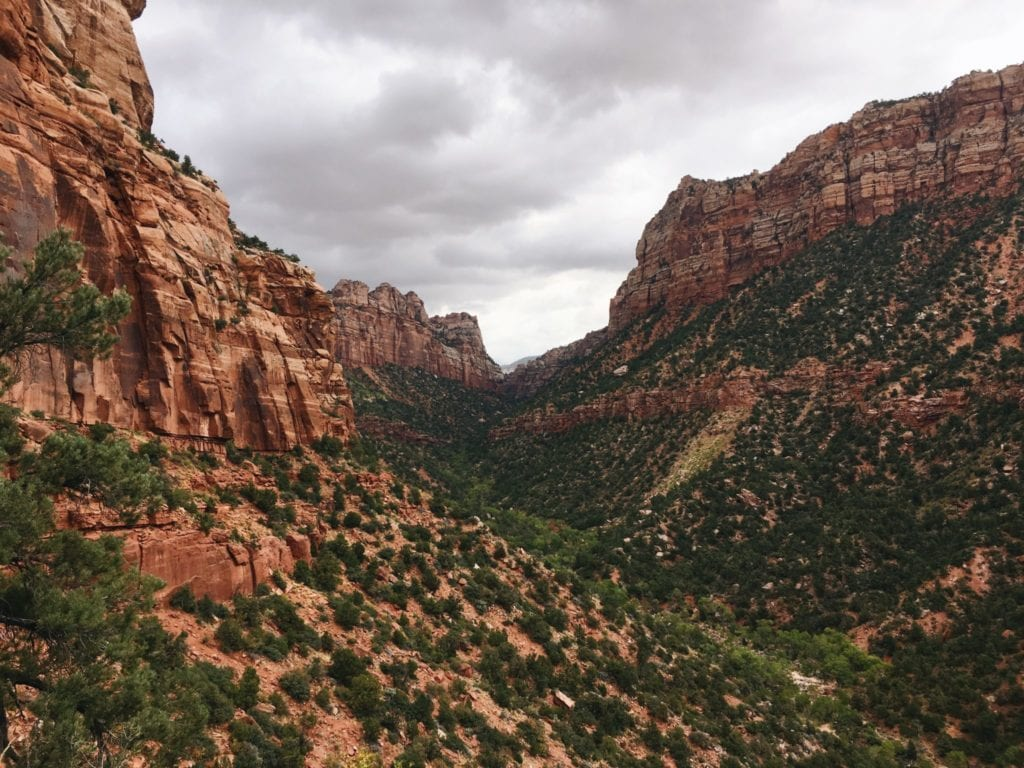 zion national park utah - www.TravelsWithElle.com