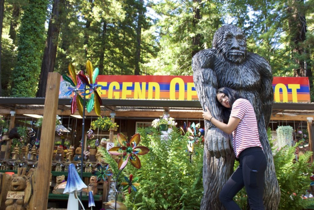 Mendocino to Redwood National Park Road Trip - Bigfoot