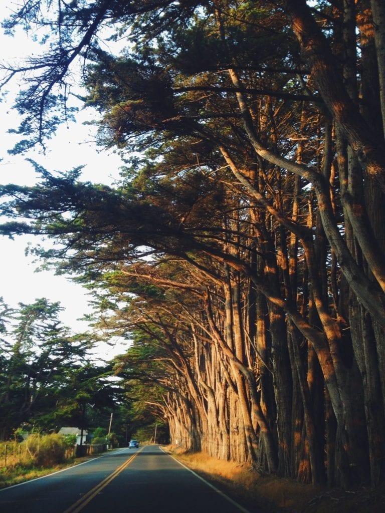 Ultimate California Coast Road Trip - Mendocino