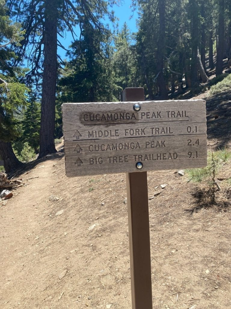 Cucamonga Peak via Icehouse Canyon - What You Need To Know - www.travelswithelle.com
