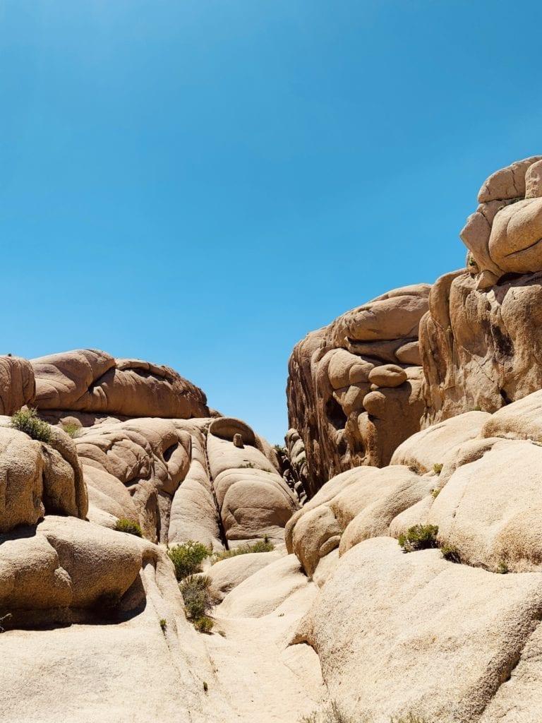 Jumbo Rocks Joshua Tree - Travels With Elle