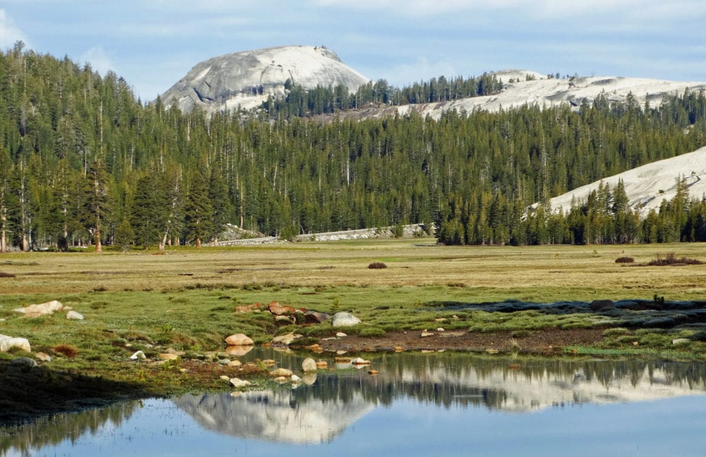 Tuolumne Meadows - Travels With Elle