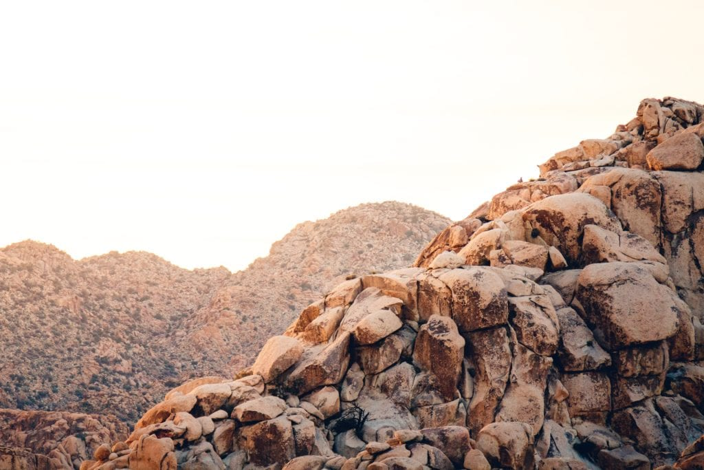 Joshua Tree Things To Do - Travels With Elle