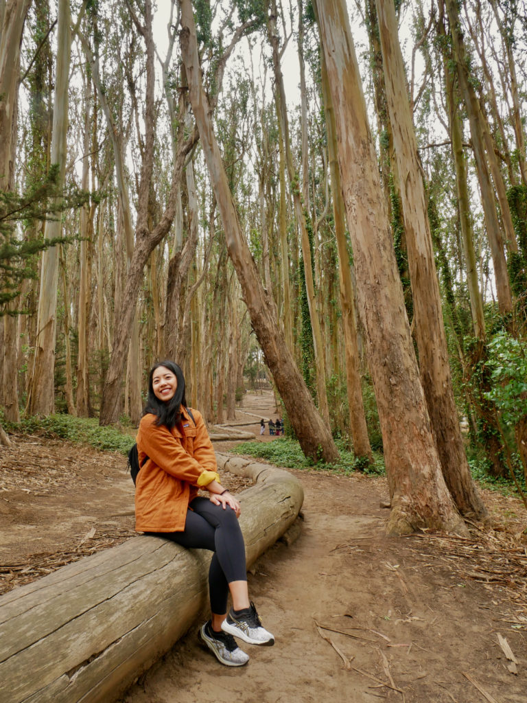 The Presidio Lover's Lane - 60 Free Things To Do In SF - Travels With Elle