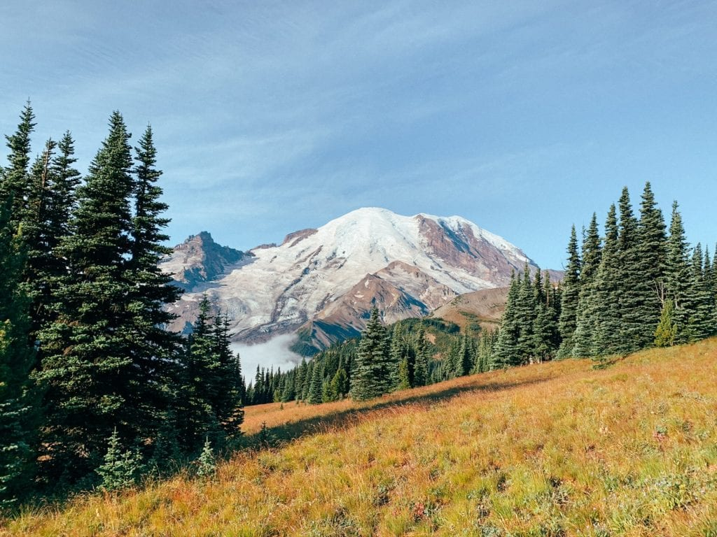 Sourdough Ridge - 18 Best Things To Do At Mount Rainier National Park For First Timers