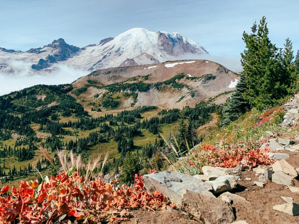18 Best Things To Do At Mount Rainier National Park Sunrise