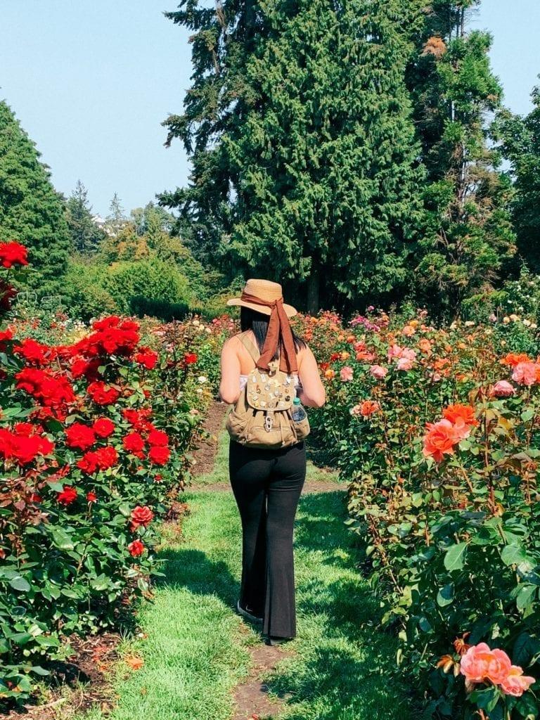 International Rose Test Garden Portland, OR - Travels With Elle