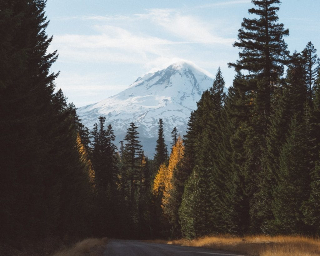 mount hood oregon - Best Road Trips From Portland, OR - TravelsWithElle