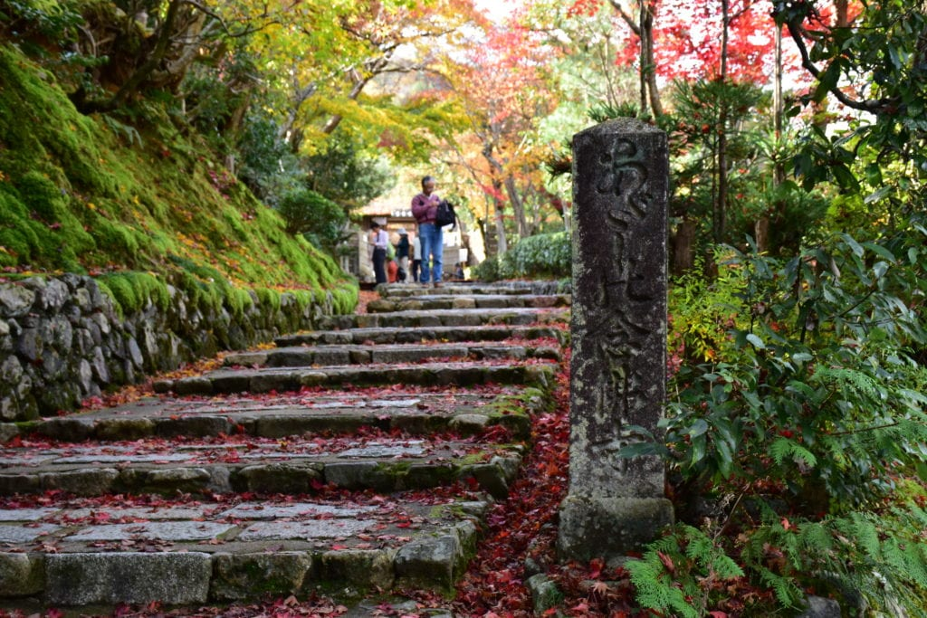 - The Ultimate 2 Week Japan Itinerary