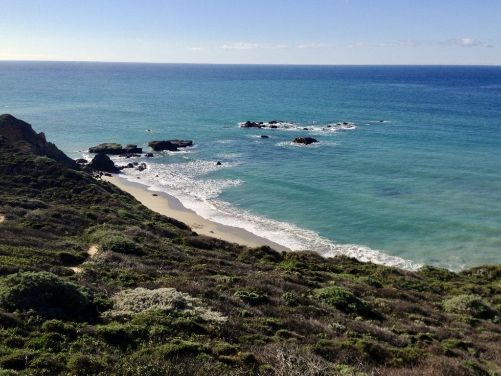 Andrew Molera State Park - Big Sur Itinerary Guide - Travels With Elle
