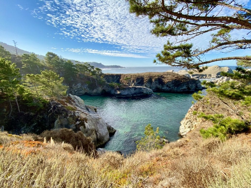 Point Lobos Natural Reserve - 32 Best Things To Do Monterey CA - TravelsWithElle