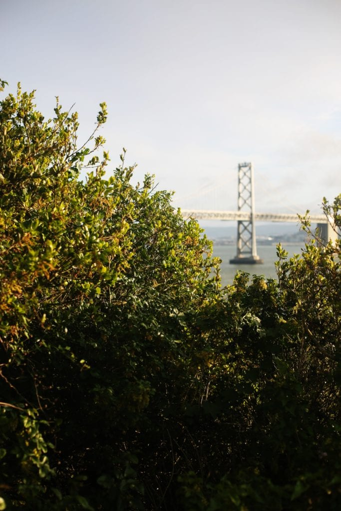 Bay Bridge - Coolest Things To Do In Oakland - Travels With Elle