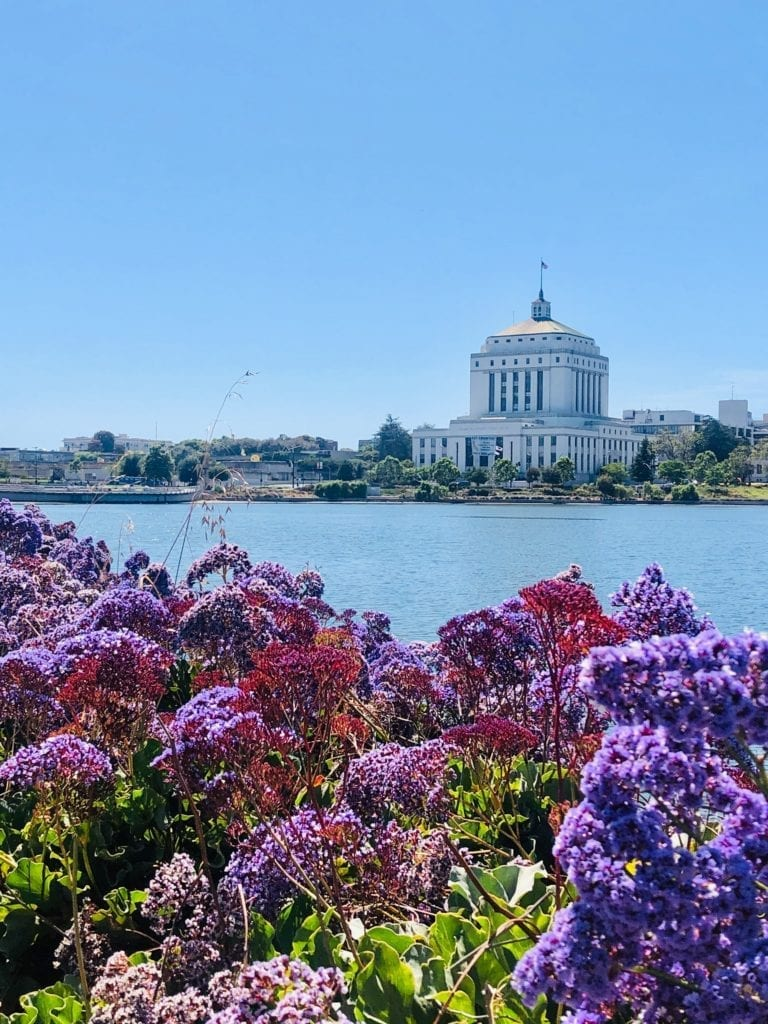 Lake Merritt - Coolest Things To Do In Oakland - Travels With Elle