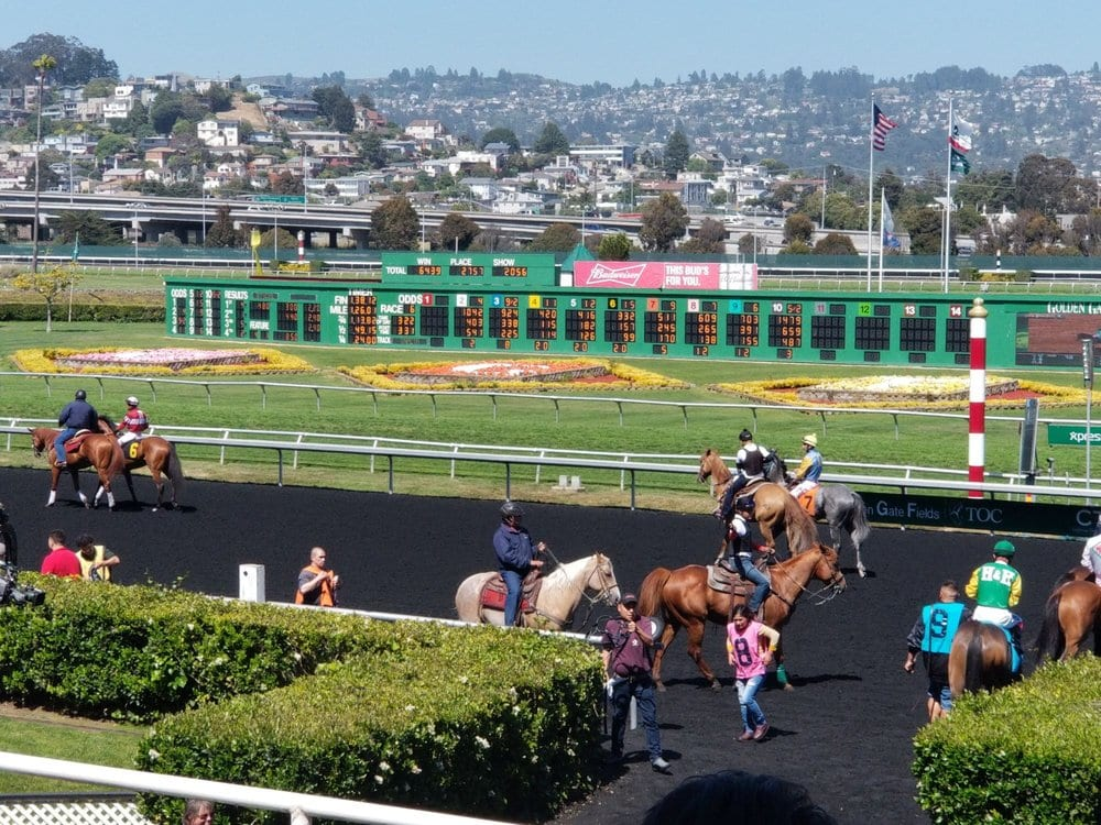 Golden Gate Fields - Best Things To Do In Berkeley CA - Travels With Elle