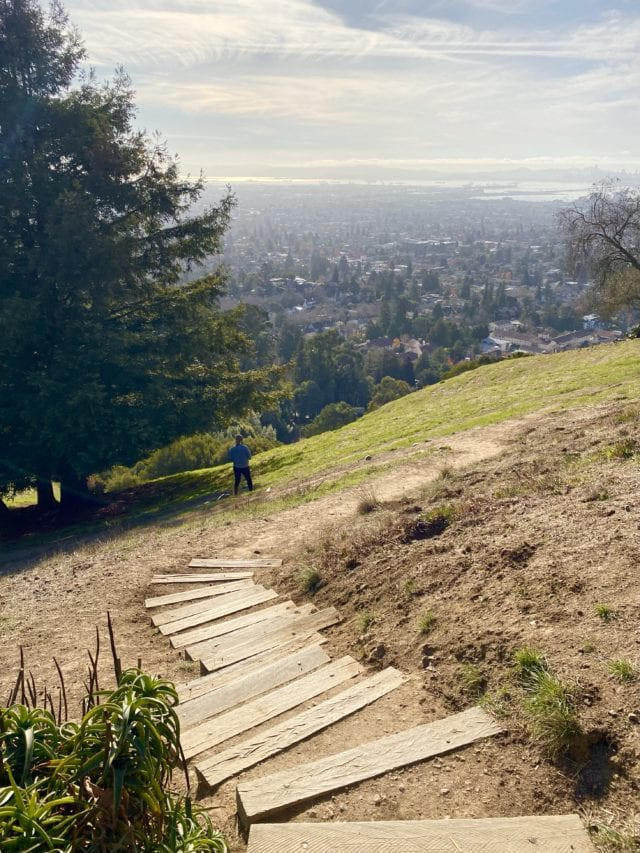 Claremont Preserve - Best Things To Do In Berkeley CA - Travels With Elle