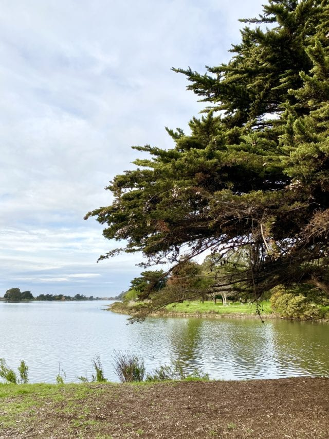 Aquatic Park - Best Things To Do In Berkeley CA - Travels With Elle