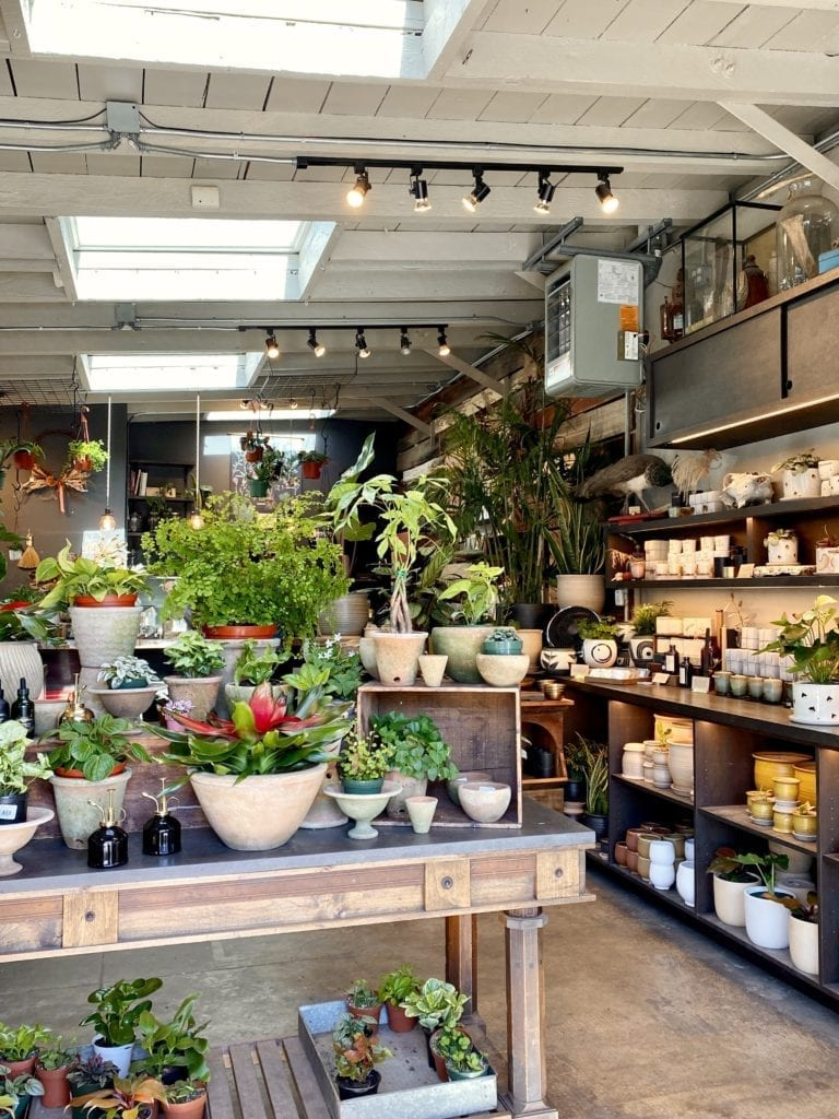 Temescal Neighborhood - Best Things To Do In Oakland CA - Travels With Elle