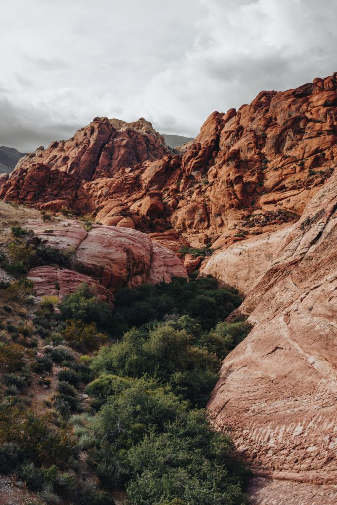 Red Rock Canyon - Ultimate List of Things To Do In Las Vegas Other Than Gambling or Drinking - Travels With Elle