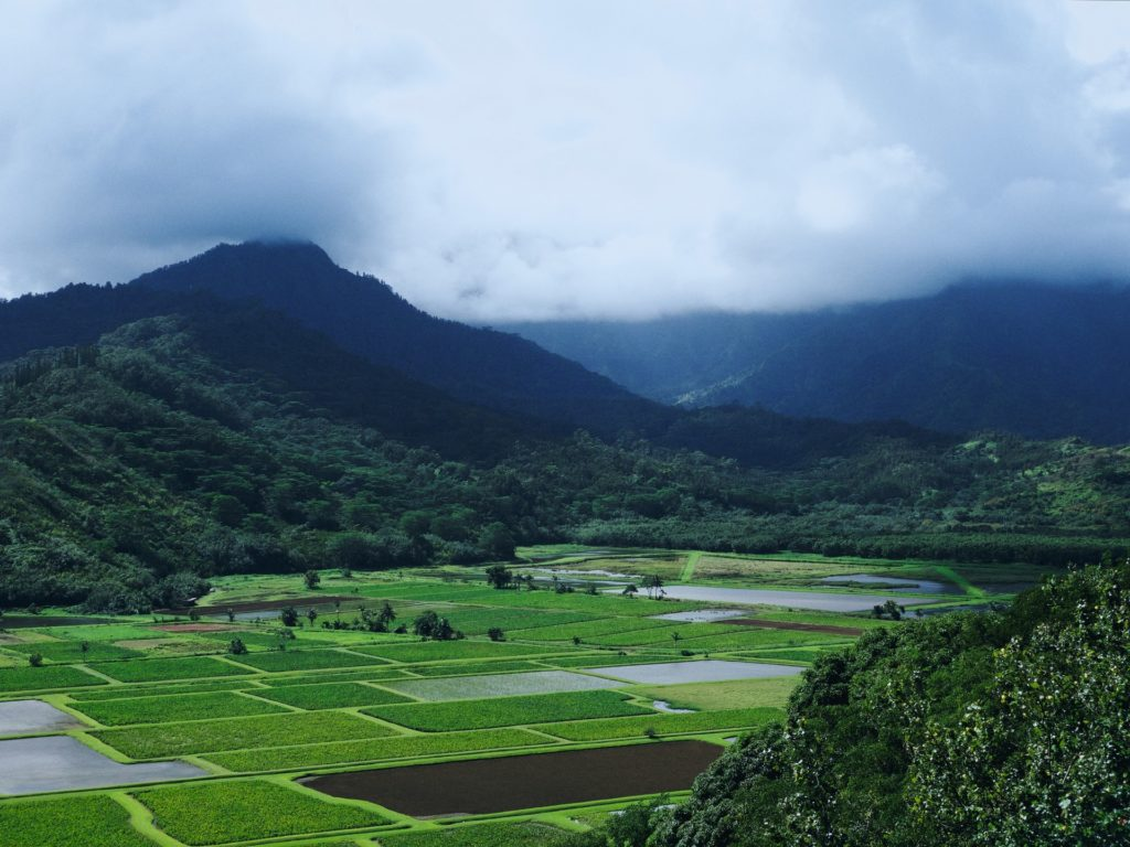 Hanalei Lookout - Best Things To Do In Hanalei and Princeville, Kauai - TravelsWithElle