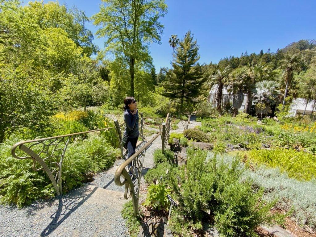 Berkeley Botanical Garden - Best Things To Do In Berkeley - Travels With Elle