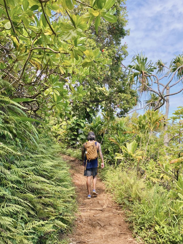 Kalalau Trail - Best Things To Do In Hanalei Kauai - TravelsWithElle