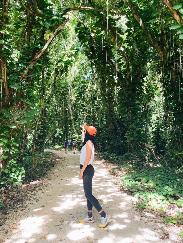 Haena State Park Kalalau Trail - The Perfect 7-Day Kauai Itinerary - TravelsWithElle