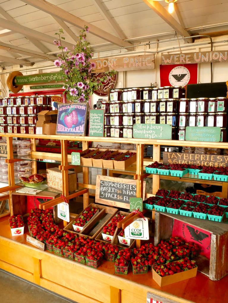 Swanton Berry Farm - San Francisco To Santa Cruz Road Trip - TravelswithElle