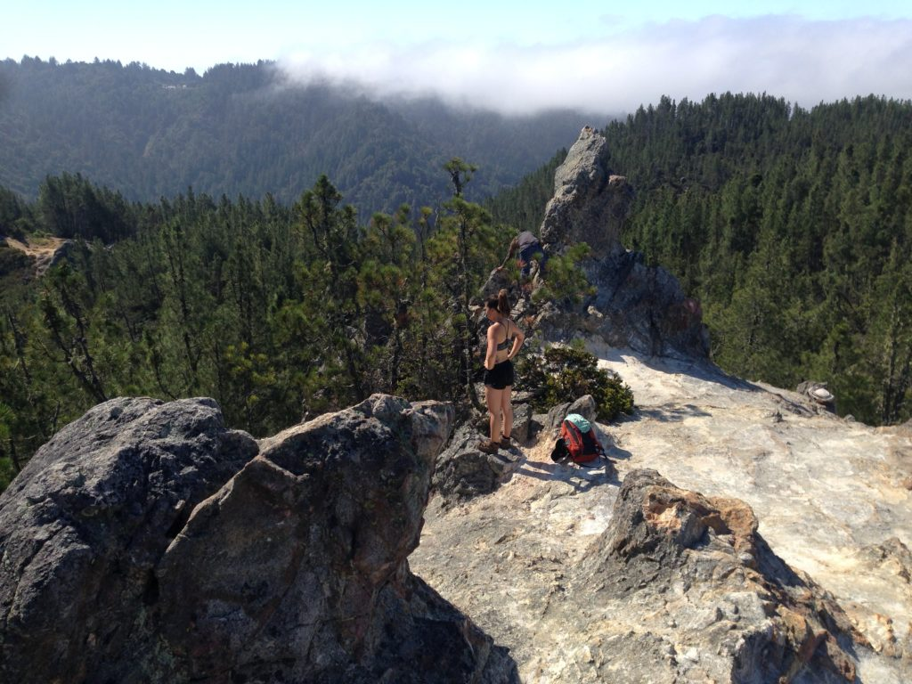 Big Basin Redwoods State Park - TravelsWithElle