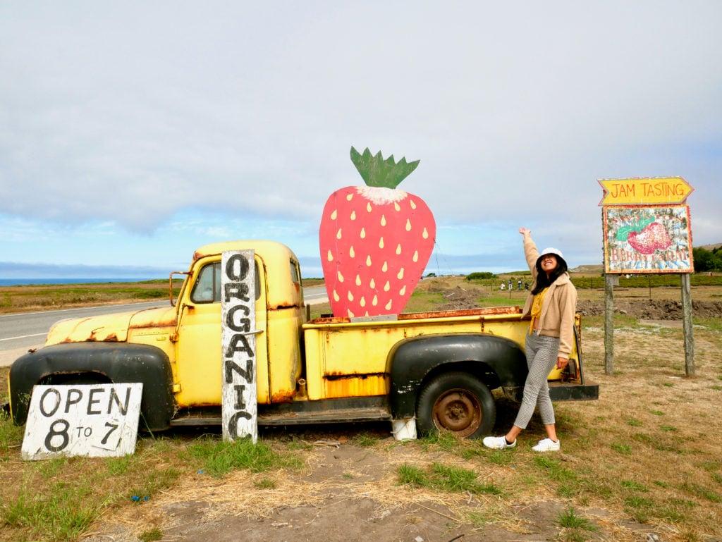 Swanton Berry Farm, CA - San Francisco To Santa Cruz Road Trip - TravelswithElle
