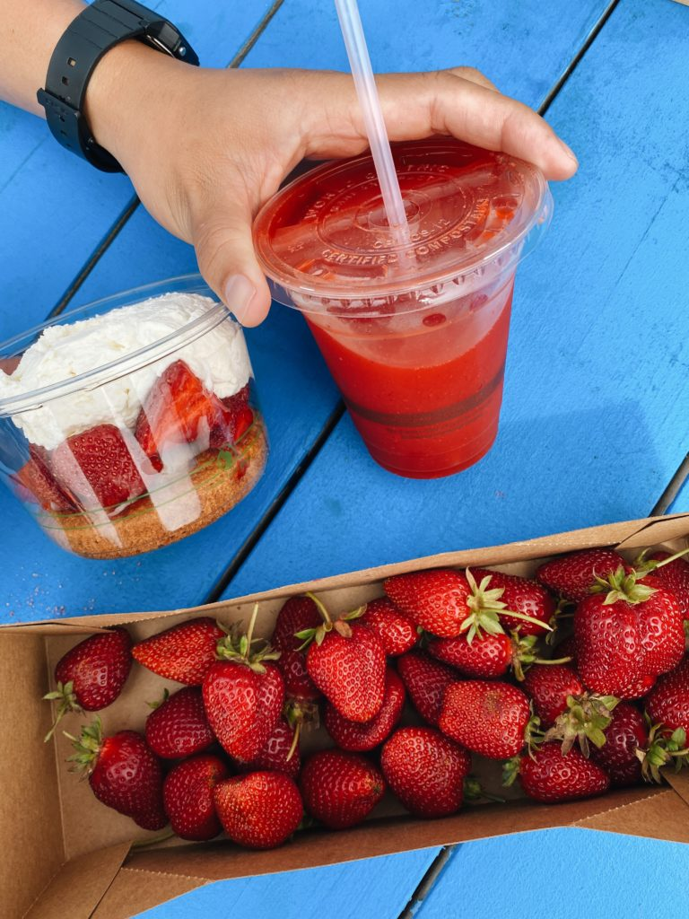 Swanton Berry Farm - California Coast Road Trip Stops - TravelsWithElle