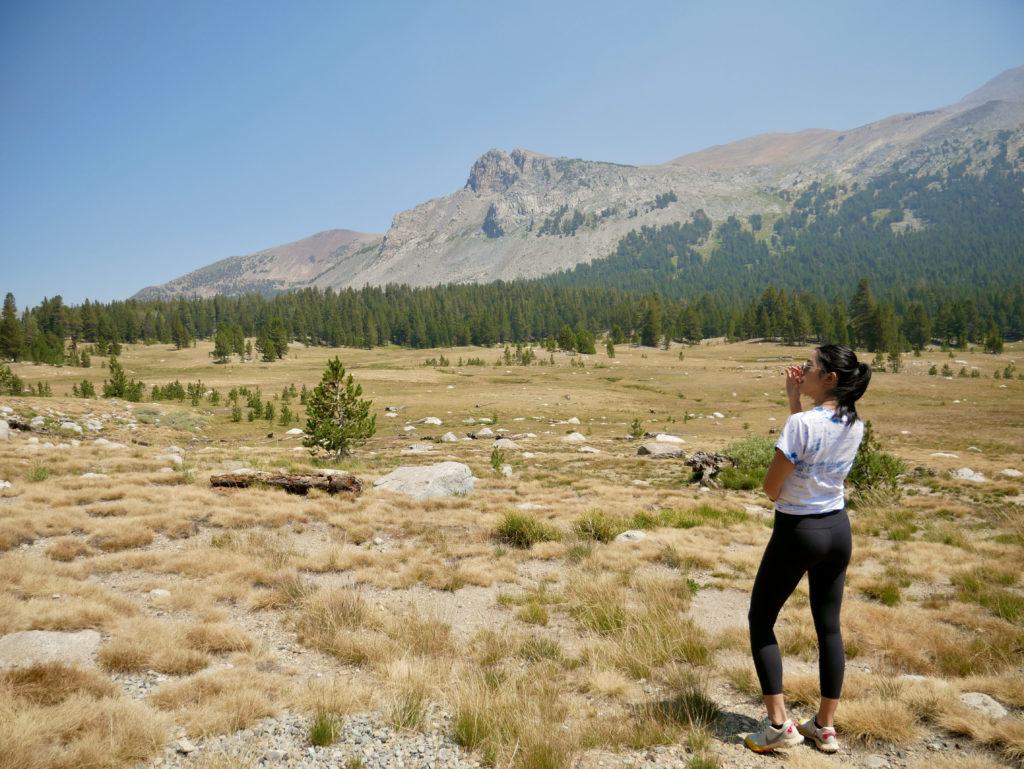 Tuolumne Meadows Yosemite National Park - Travels With Elle