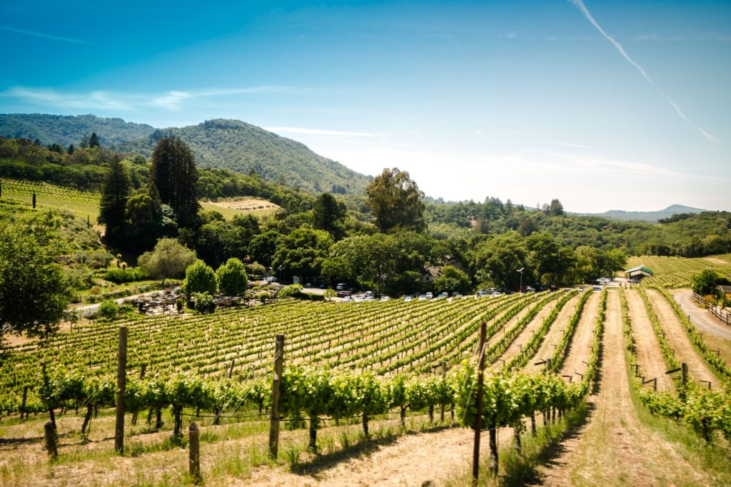 27 Best Things To Do In Sonoma County, California - Travels With Elle