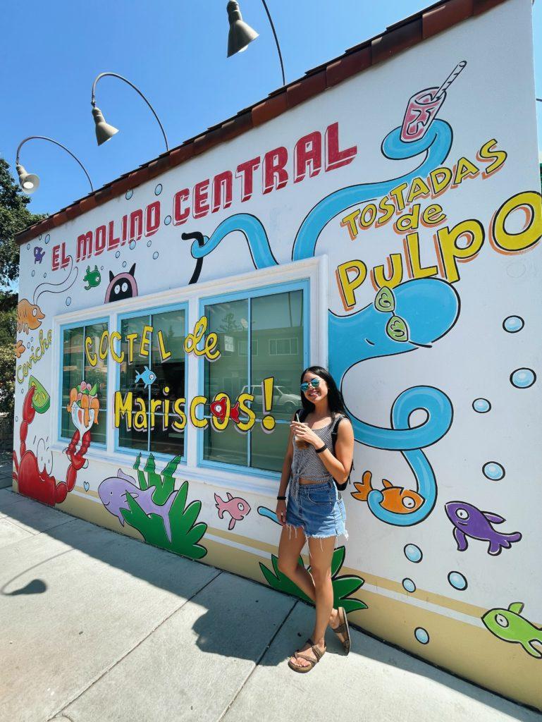 El Molino Central - Sonoma County Weekend Getaway - Travels With Elle